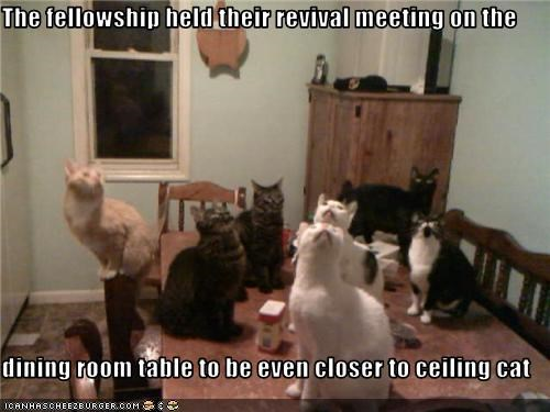 The fellowship held their revival meeting on the  dining room table to be even closer to ceiling cat