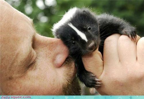 dem paws,people,skunk