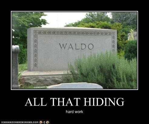 ALL THAT HIDING
