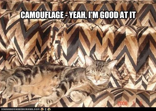 CAMOUFLAGE - YEAH, I'M GOOD AT IT