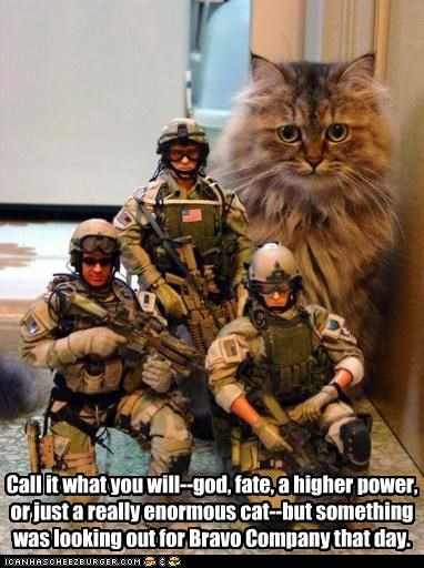 action figures,army,bravo company,call it what you will,caption,captioned,cat,fate,god,higher power,military