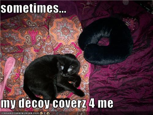 sometimes...  my decoy coverz 4 me