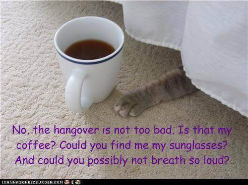 No, the hangover is not too bad. Is that my coffee? Could you find me my sunglasses? And could you possibly not breath so loud?