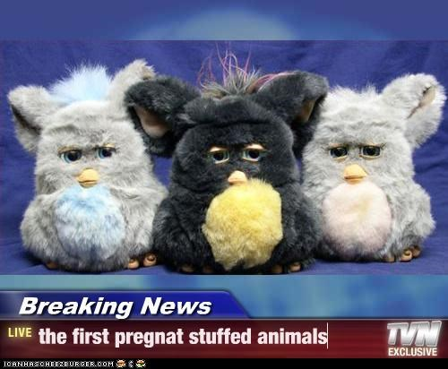 Breaking News - the first pregnat stuffed animals