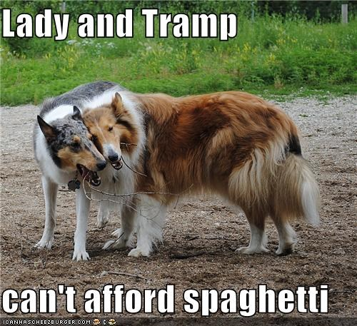 Lady and Tramp  can't afford spaghetti