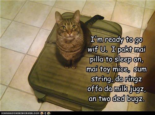 I'm ready to go wif U.  I pakt mai pilla to sleep on, mai toy mice,  sum string, da ringz offa da milk jugz, an two ded bugz.