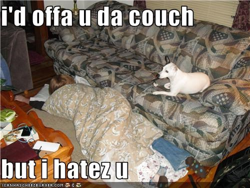 i'd offa u da couch  but i hatez u