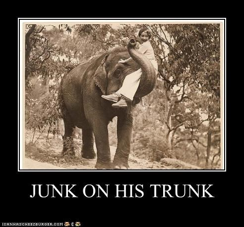JUNK ON HIS TRUNK