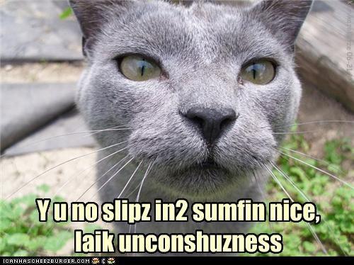 Y u no slipz in2 sumfin nice, laik unconshuzness
