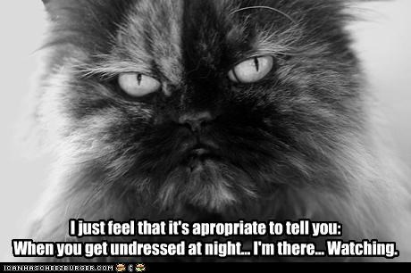 I just feel that it's apropriate to tell you: When you get undressed at night... I'm there... Watching.