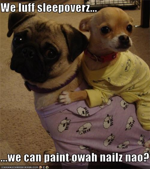 We luff sleepoverz...  ...we can paint owah nailz nao?