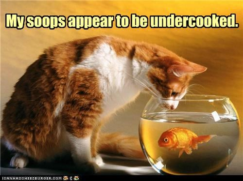 My soops appear to be undercooked.