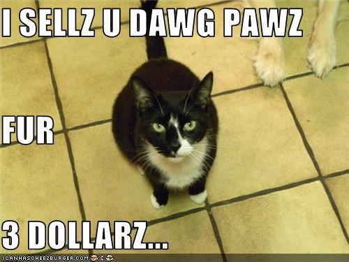 I SELLZ U DAWG PAWZ FUR 3 DOLLARZ...