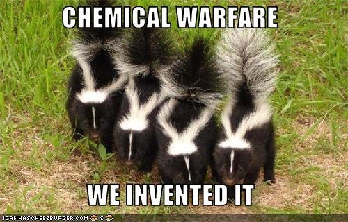 CHEMICAL WARFARE   WE INVENTED IT