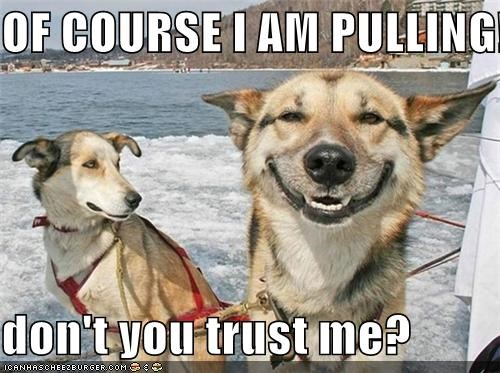 OF COURSE I AM PULLING!  don't you trust me?