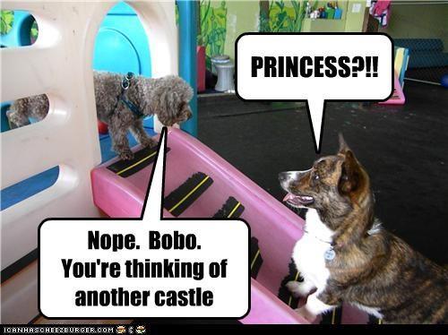 castle,corgi,mario,mixed breed,princess,video games