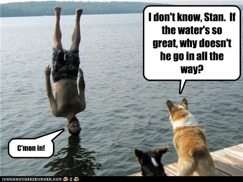I don't know, Stan.  If the water's so great, why doesn't he go in all the way?