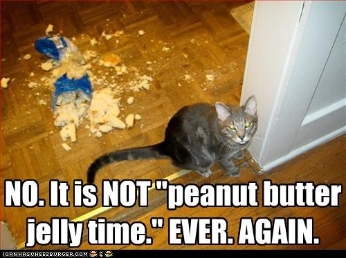 again,angry,bread,caption,captioned,cat,denial,denying,do not want,ever,Hall of Fame,it is not,jelly,mess,no,peanut butter,refusal,sandwich,time,upset