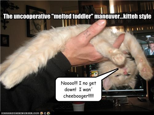 "The uncooperative ""melted toddler"" maneuver...kitteh style"