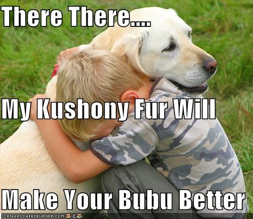 There There.... My Kushony Fur Will Make Your Bubu Better