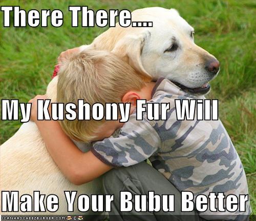 boo boo,feel better,fur cushion,hug,sad child