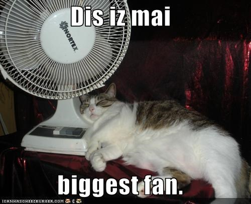 Dis iz mai  biggest fan.
