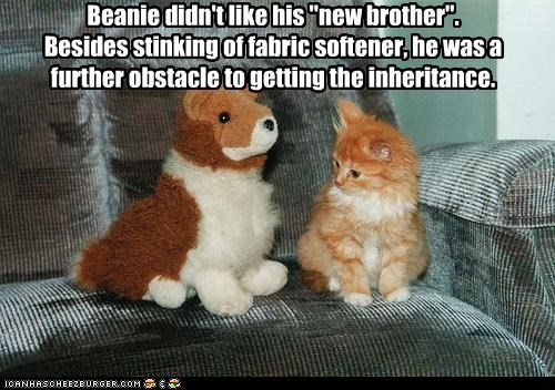 "Beanie didn't like his ""new brother"".   Besides stinking of fabric softener, he was a further obstacle to getting the inheritance."