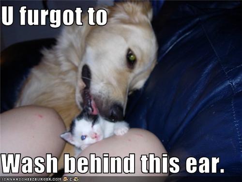 U furgot to   Wash behind this ear.