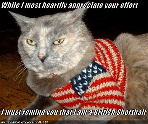 While I most heartily appreciate your effort  I must remind you that I am a British Shorthair
