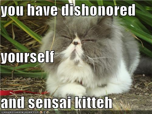 you have dishonored  yourself and sensai kitteh