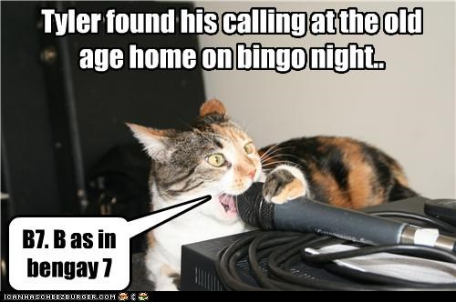 bingo,bingo night,calling,caption,captioned,cat,elderly,found,home,microphone,night,old age