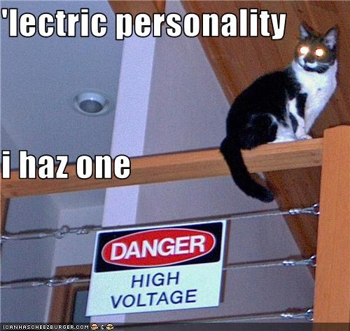 'lectric personality i haz one