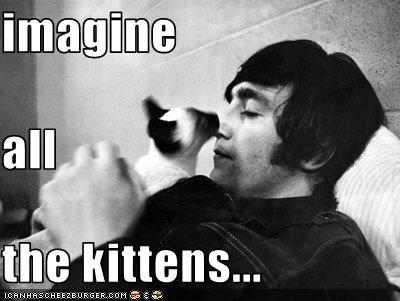john lennon,kitten