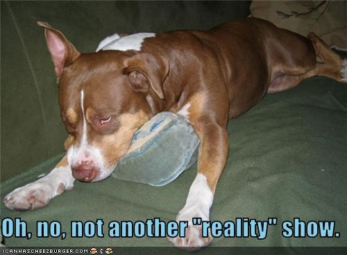 """Oh, no, not another """"reality"""" show."""