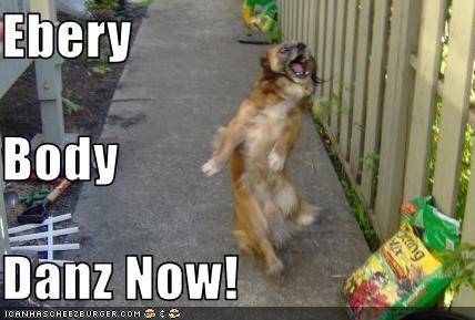 Ebery Body Danz Now!