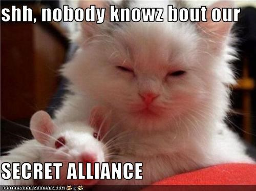 shh, nobody knowz bout our  SECRET ALLIANCE