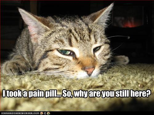 I took a pain pill... So, why are you still here?