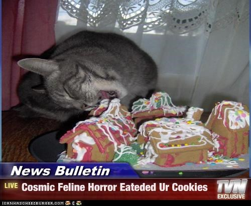 News Bulletin - Cosmic Feline Horror Eateded Ur Cookies