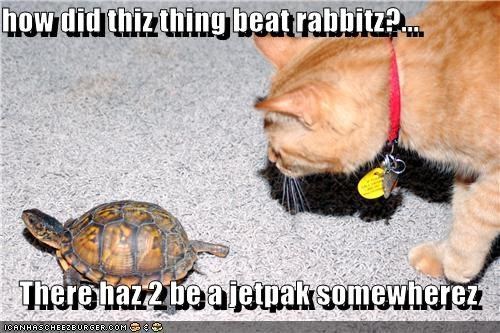 how did thiz thing beat rabbitz?...  There haz 2 be a jetpak somewherez