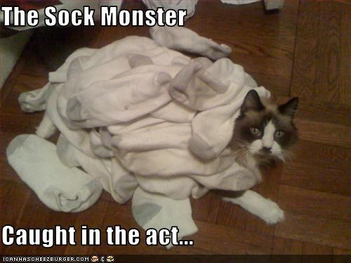 The Sock Monster   Caught in the act...