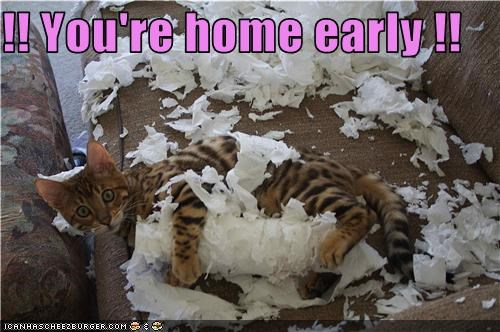 !! You're home early !!