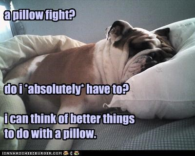 a pillow fight?     do i *absolutely* have to?  i can think of better things  to do with a pillow.