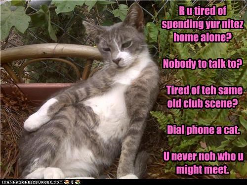 R u tired of spending yur nitez home alone?  Nobody to talk to?    Tired of teh same old club scene?    Dial phone a cat.    U never noh who u might meet.