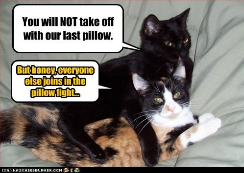 You will NOT take off with our last pillow.