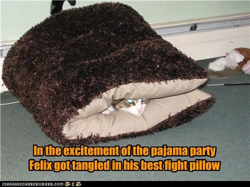 In the excitement of the pajama party Felix got tangled in his best fight pillow