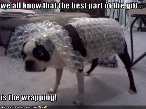 we all know that the best part of the gift...  is the wrapping!