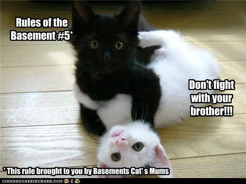 Rules of the Basement #5*