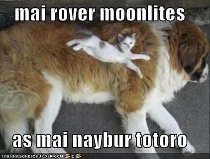 mai rover moonlites  as mai naybur totoro