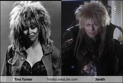 Tina Turner Totally Looks Like Jareth