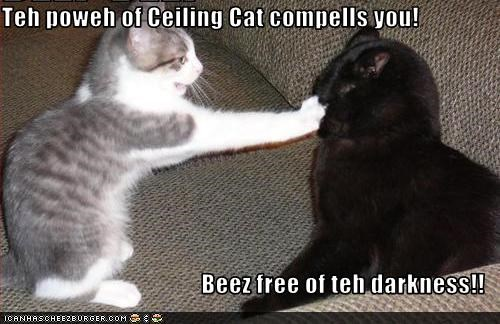 Teh poweh of Ceiling Cat compells you!  Beez free of teh darkness!!